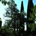 GIARDINI NINFA - ABBAZIA  VALVISCIOLO 16 ott. 2011 (53)